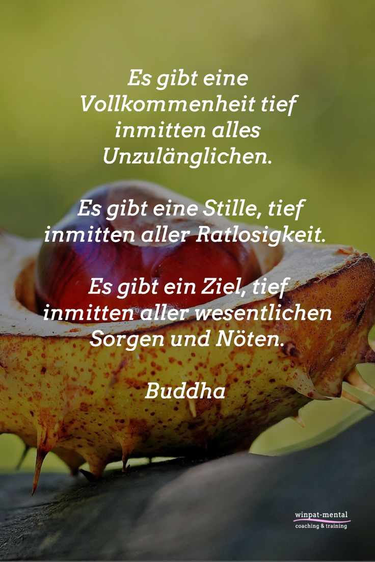 Es gibt eine Vollkommenheit tief inmitten alles Unzulänglichen.   Es gibt eine Stille, tief inmitten aller Ratlosigkeit.   Es gibt ein Ziel, tief inmitten aller wesentlichen Sorgen und Nöten.  Buddha