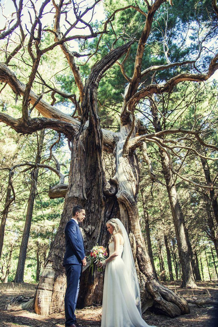Photography: Lux Photography - www.facebook.com/lux.weddings Read More: http://www.stylemepretty.com/australia-weddings/2014/09/24/diy-wedding-at-coriole-vineyard/