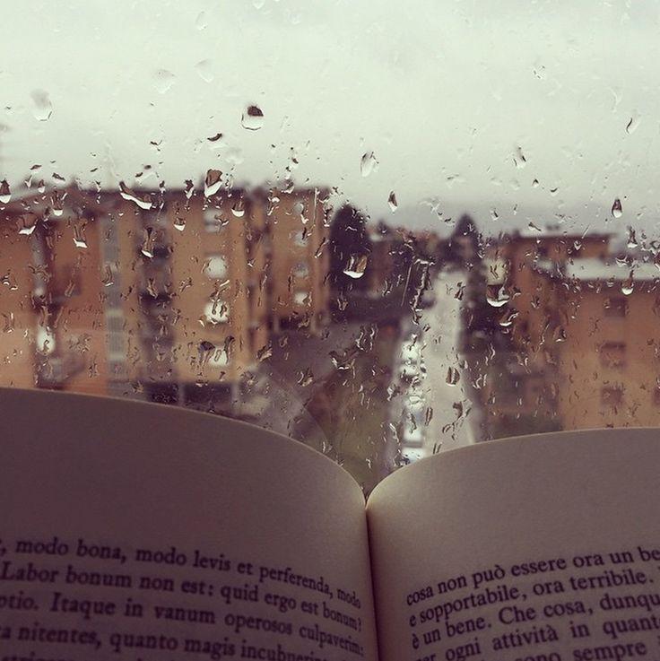 Una #domenica. Una finestra. Un #libro. Può andare come programma di oggi? #ioleggoperché #book