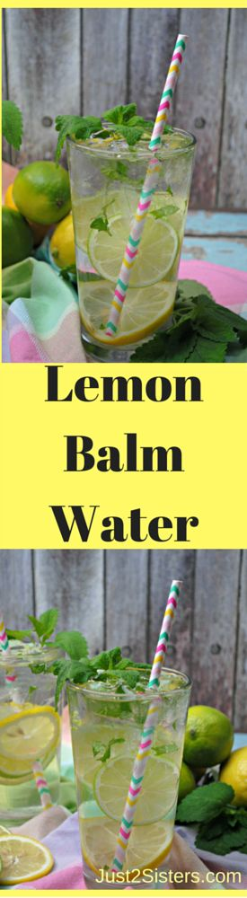 Lemon Balm Water is a refreshing and delicious way to drink more water! Perfect for after a hard workout or you can drink it for the many benefits of Lemon Balm!