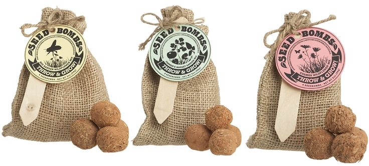 The best kind of bombs: seed bombs!