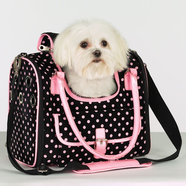 zack zoey deco dot pet carrier doggie bag pinterest pet carriers doggie bag and fur babies. Black Bedroom Furniture Sets. Home Design Ideas