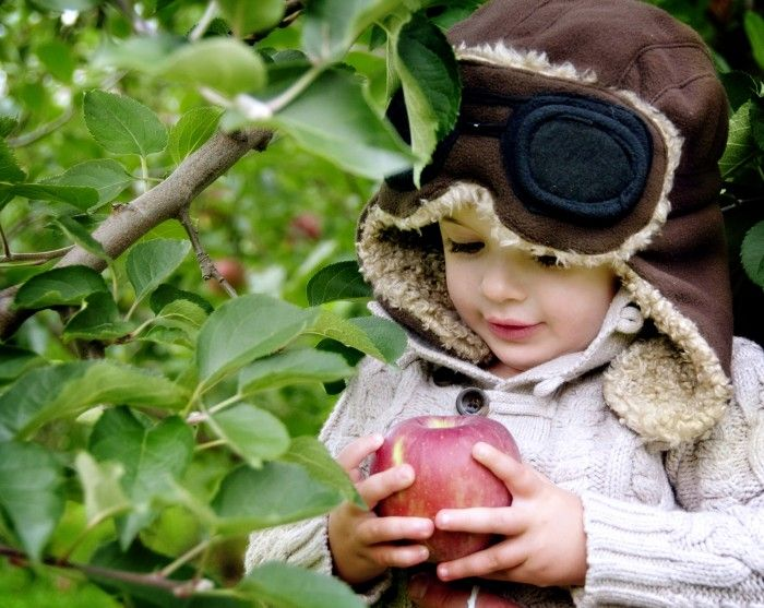Apple picking locations in or close to Bergen County, NJ.