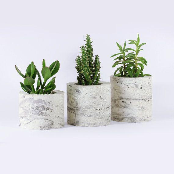 Les 25 Meilleures Id Es De La Cat Gorie Cache Pots Pour Plantes Grasses Sur Pinterest Talage