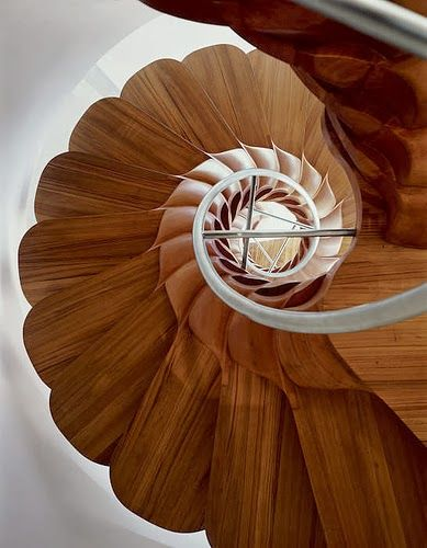 Best Petal Stairs Beautiful Stairs Stairs Design Modern 400 x 300