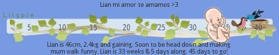 CHICAS CUANTOS MESES SON 25 SEMANAS ESTOY CONFUNDIDA???? – Embarazadas primerizas