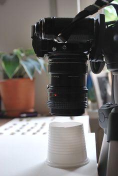 e photographie des coquillages. Je n'ai pas une boîte douce, mais est venu avec ce vraiment simple astuce et il est une telle solution élégante (et pas cher et pratique) pour les petits objets / macro que je dois partager: Il suffit de couper le fond d'une tasse en plastique blanc , et hop! Vous avez une boîte douce.