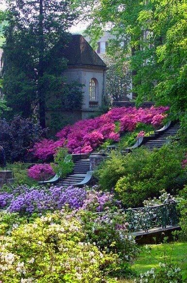 this is the garden if you follow the path there is a waterfall there - Beautiful Garden Pictures