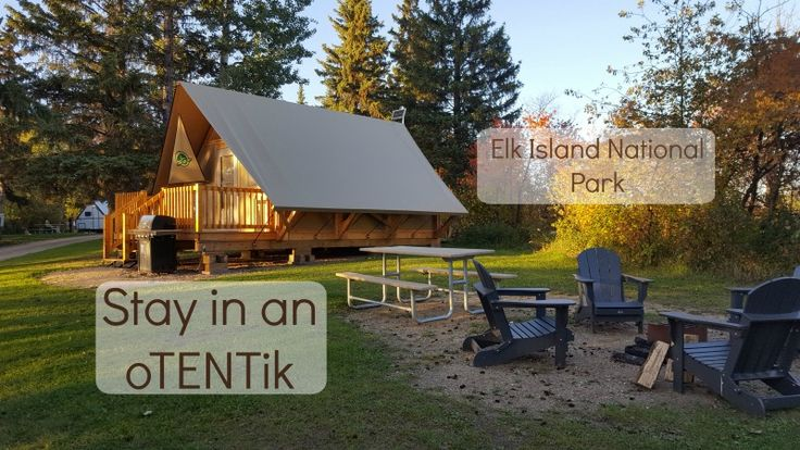 The new oTENTiks at Elk Island National Park are a cross between a tent and a cabin (complete with heater!) This is comfort camping at its best!