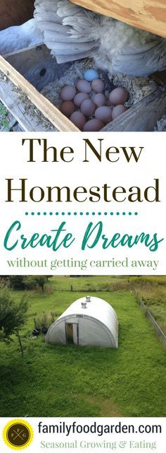 Planning a New Homestead (without getting carried away!)