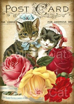 Victorian Kittens and Roses  Digital Collage Sheet Download and Print Paper Crafts Card Original Whimsical Altered Art GalleryCat CS51. $3.50, via Etsy.