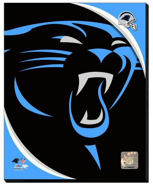 Carolina Panthers Team Logo Stretched Canvas