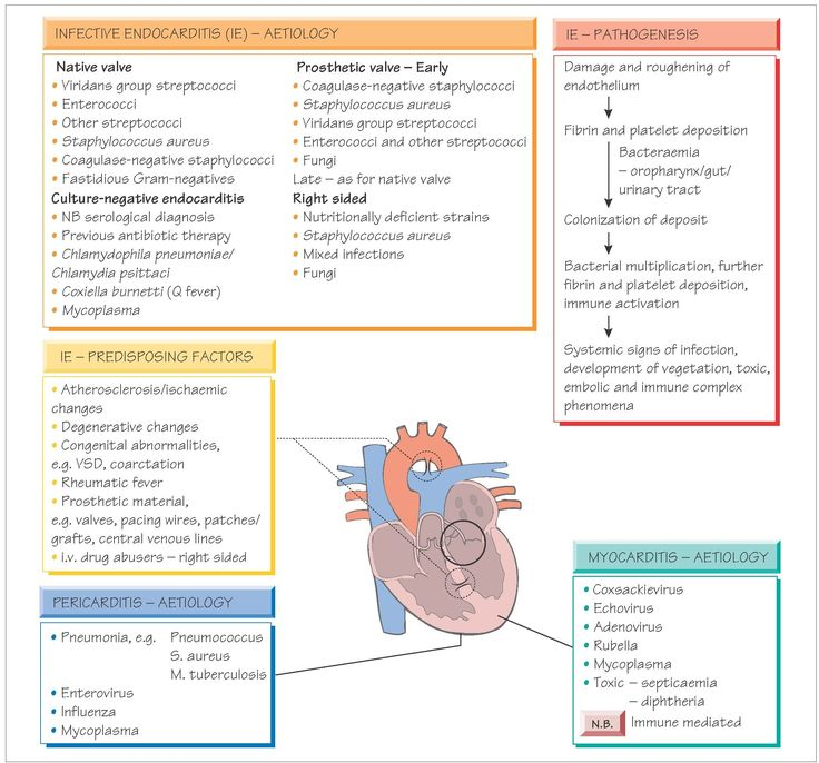 Endocarditis, myocardi...