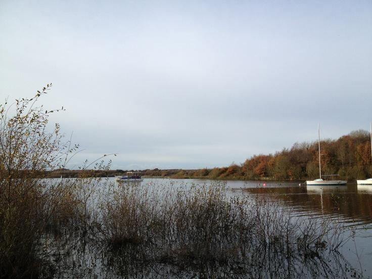 Roadford Lake looking calm