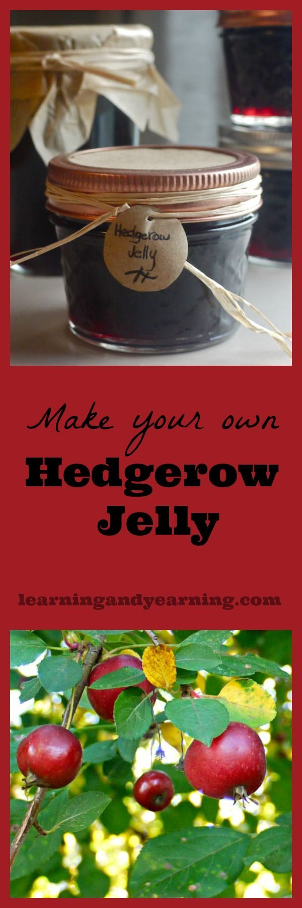 Hedgerow jelly is a great way to use the multitude of wild fruits that tend to grow along the edges of field and forest. And using some crabapple means that you don't need pectin.