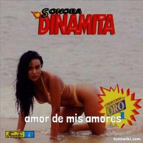 """-- #LyricArt for """"Amor de Mis Amores"""" by La Sonora Dinamita"""