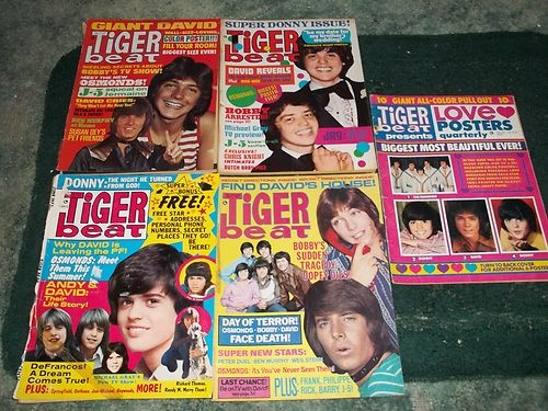 Tiger Beat Magazines and Bop