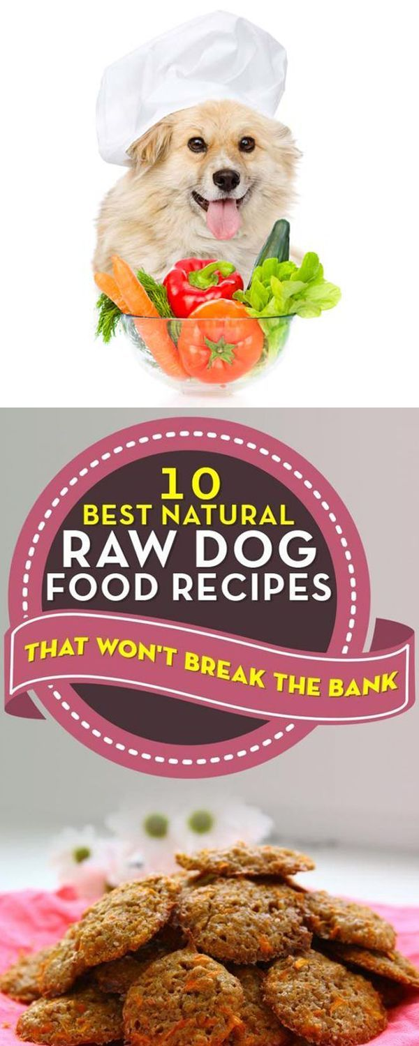 Raw Dog Food Recipes Easy Cheap 10 Bone Raw Diet For Dogs