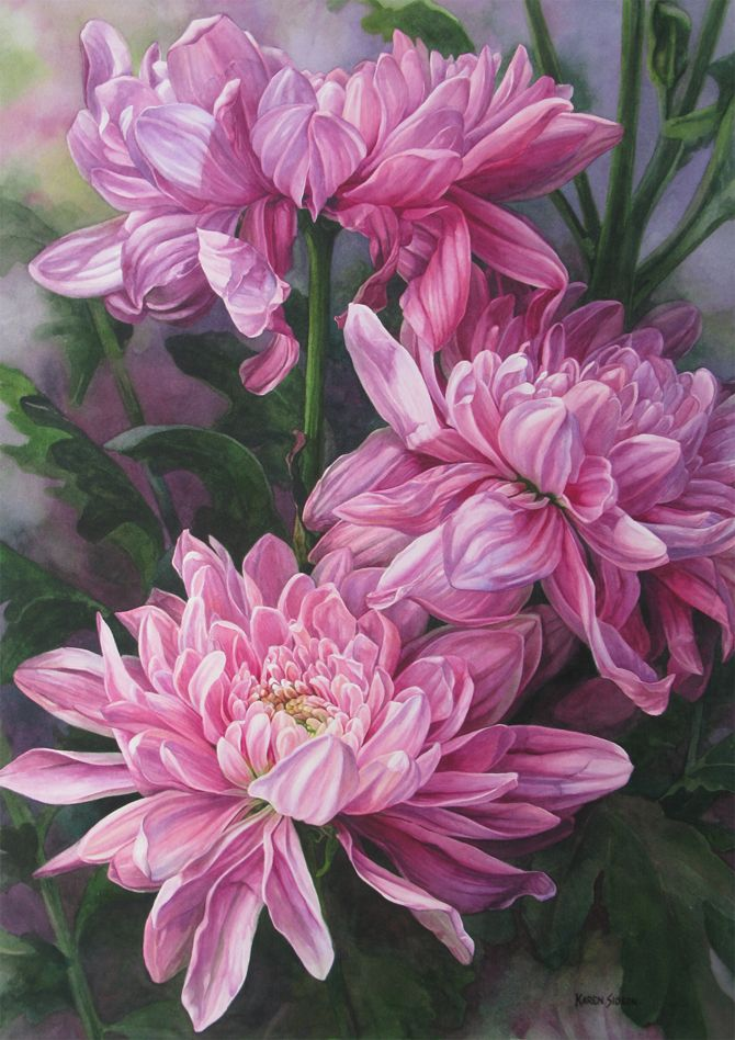 """""""Chrysanthemums"""" watercolor on paper 24 x 34 inches ©2015 Karen Sioson"""