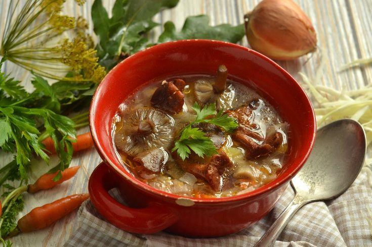 Грибные щи с капустой. Пошаговый рецепт с фото - Ботаничка.ru