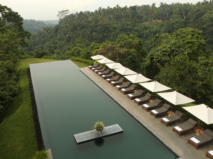 Alila Ubud : World's Coolest Pools: Infinity and Beyond : TravelChannel.com