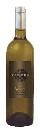 Oppidum- Chardonnay e Sauvignon