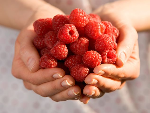 Berries are packed with health-boosting nutrients. Kirsten Hartvig, runner and author of Healing Berries, picks six of the best.