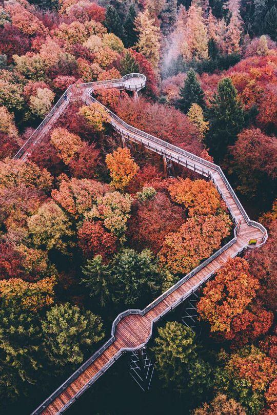 Close to BERLIN: Beelitzer Heilstätten walkway in Germany :)