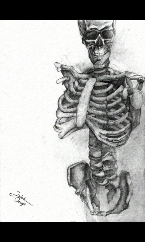 The first drawing lessosns term ended with that skeleton work. Enjoy, and like on facebook :  https://m.facebook.com/357362947792/photos/a.10152470628307793.1073741874.357362947792/10152470631007793/?type=1&refid=17&ref=bookmark&_ft_