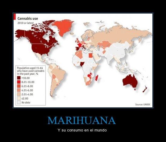 MARIHUANA - Y su consumo en el mundo