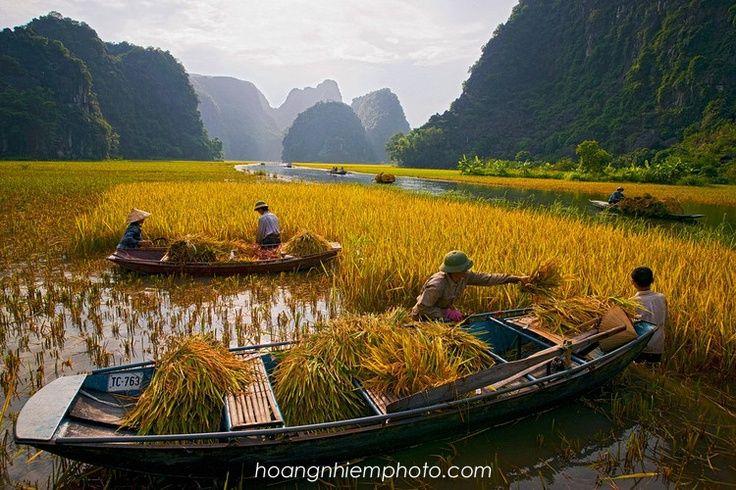 Ninh Binh | Ninh Binh, Vietnam