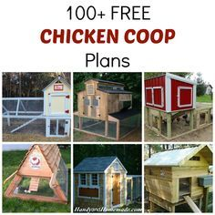 100+ Free DIY Chicken Coop Plans And Ideas | Handy U0026 Homemade
