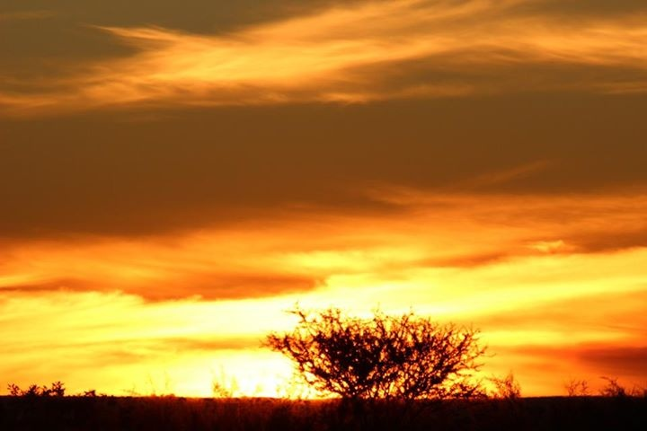 NEW PHOTO COMPETITION This stunning sunset photo by Africa: Live app user Edwina Ries inspired us to declare our new photo competition, OPEN.