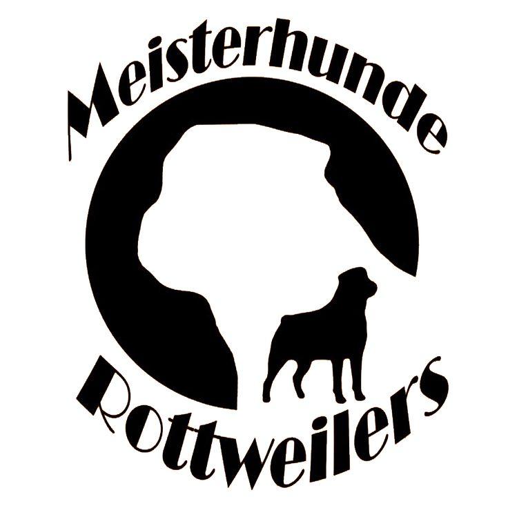 High Quality German Rottweiler Breeder