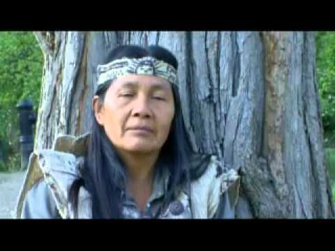 Culture and Environment: The connection that indigenous people have with the environment is unique in nature. In today's modern world, we don't stop to think about the environment in which we live as much as we should, with endless consequences as a result.