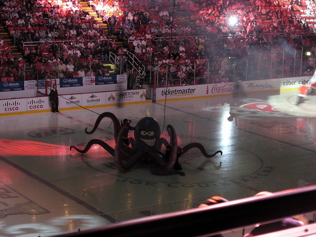gotta love al the octopus of the detriot red wings :-)