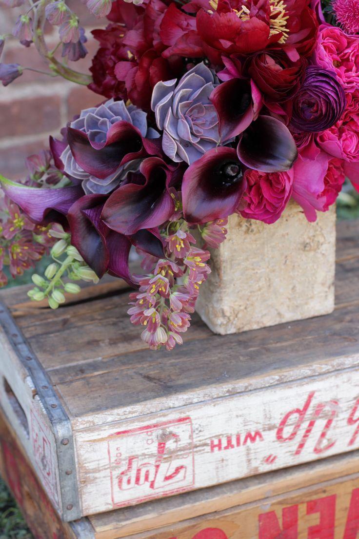 26 best aa - dahlias - garden images on pinterest | dahlia