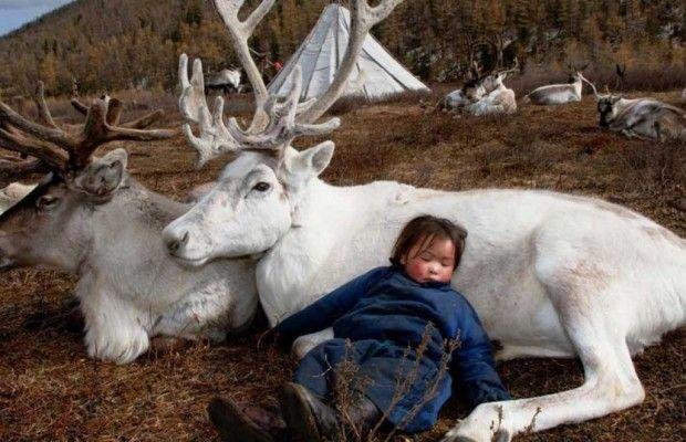 Ανεξήγητα Φαινόμενα...: Μογγολία: Η καθημερινή ζωή των ανθρώπων που ζουν μ...