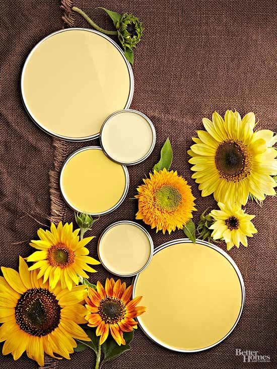 color palettes yellow paint