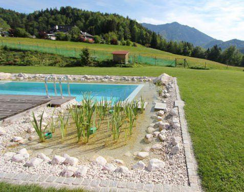 schwimmteich_03.jpg (477×376)