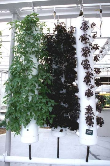 79 Best Images About Growing Vertical Hydroponics On