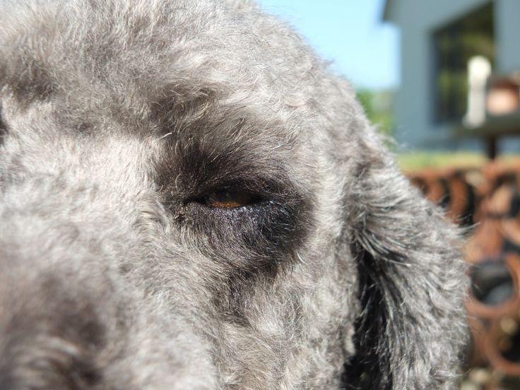 super close up