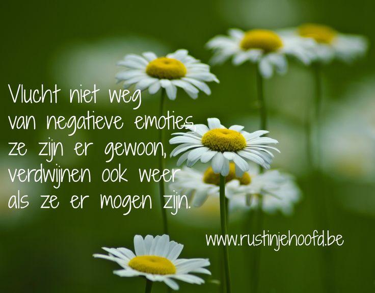 Vlucht niet weg van negatieve emoties,  ze zijn er gewoon,  verdwijnen ook weer als ze er mogen zijn. http://www.rustinjehoofd.be/