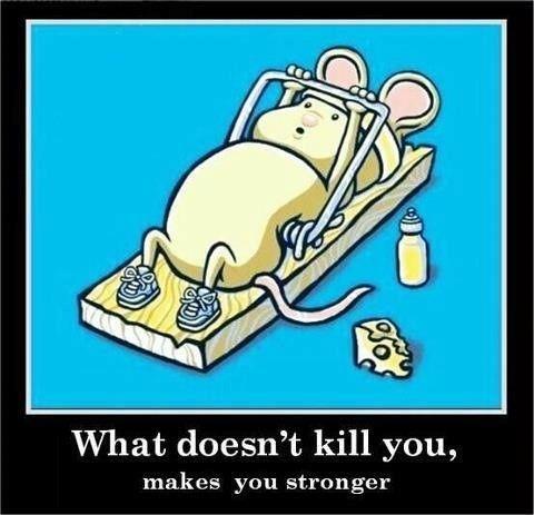 Go mouse buddy, go!!
