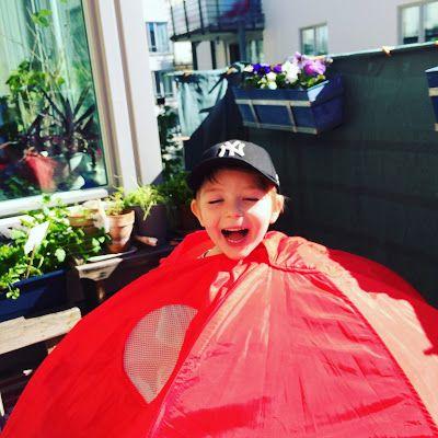 Eva Swedenmarks Värld: Vi fixade balkongen i solen och firade med jordgub...