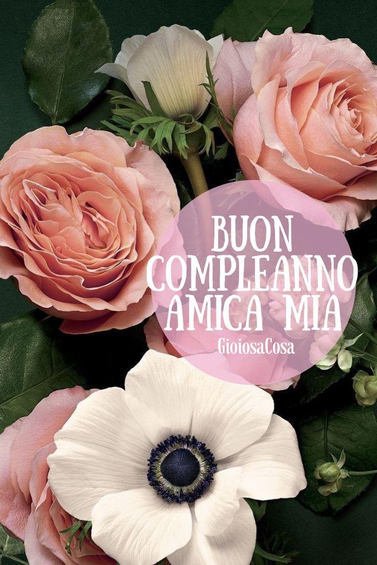 Buon Compleanno Amica Mia Questi Fiori Sono Per Te Un Bouquet Di Quelli Piu Belli Buon Compleanno Buon Compleanno Amico Buon Compleanno Foto