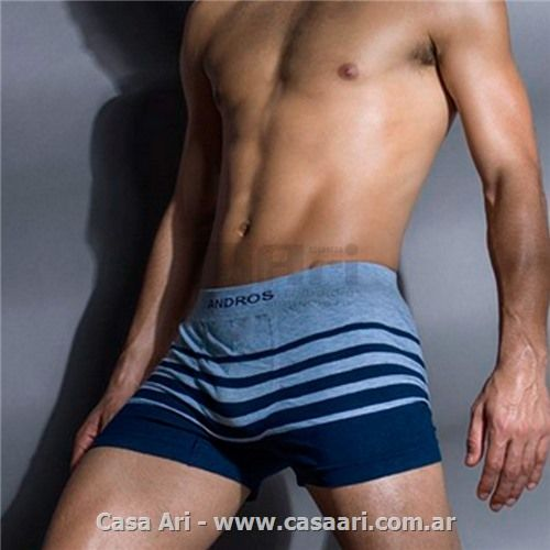 andros boxer