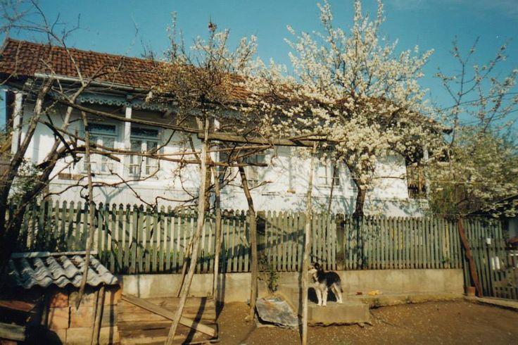 Casa bunicilor mei