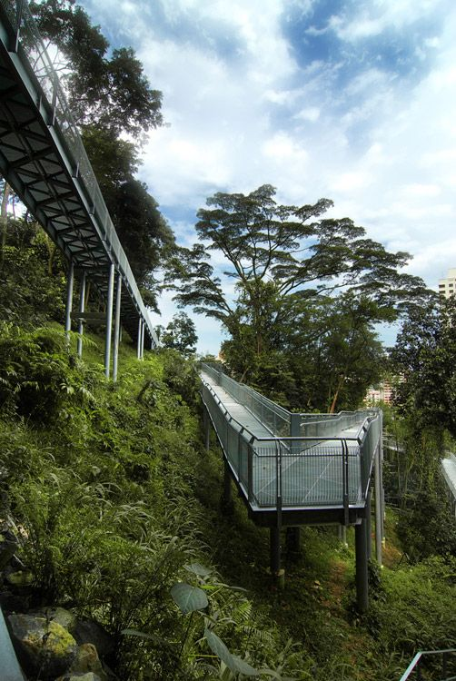 Forest Walk - from the Alexandra Arch at the HortPark to Blangah Hill Park, Singapore;  designed by LOOK Architects Pte Ltd;  one mile long elevated pedestrian walkway