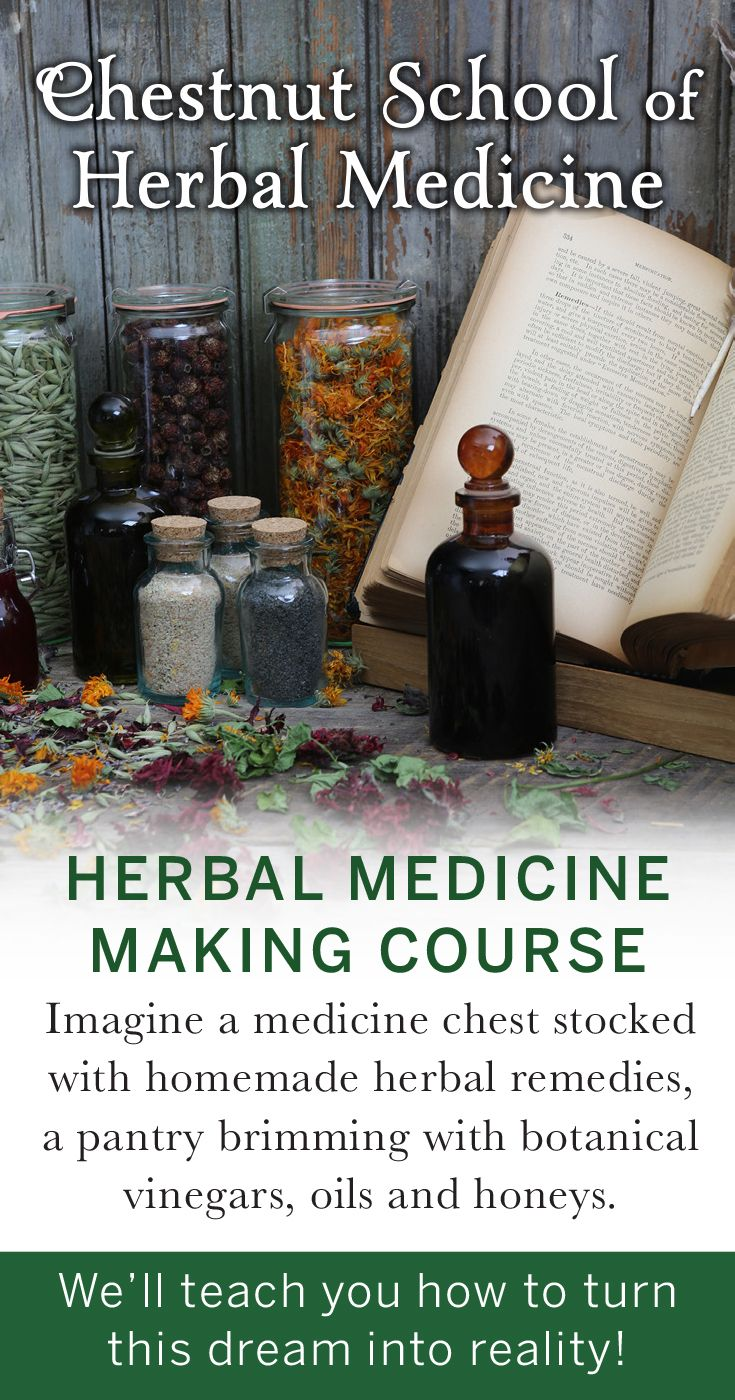 The Online Medicine Making Course is enrolling now!